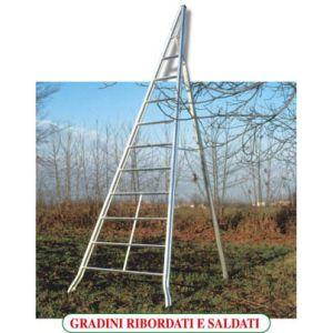 Scala in Alluminio Mod. AGRI